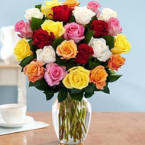 roses pro flowers